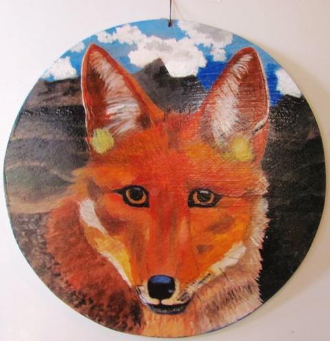 Andean Fox-Zorro Andino