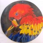 Gallery of paintings of Ecuadorean wildlife. Mi  galería de imagenes de fauna silvestreecuatoriana